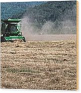 Grass Harvest 16000 Wood Print