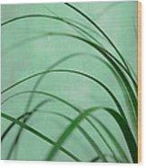 Grass Impression Wood Print