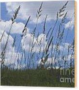 Grass Meets Sky Wood Print
