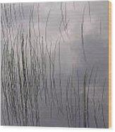 Grass Mirrors Sky Wood Print