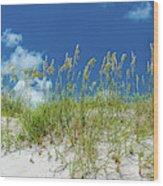 Grass On The Beach, Bill Baggs Cape Wood Print