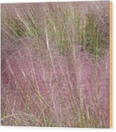 Grass Photography - Soft - By Sharon Cummings Wood Print