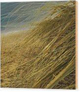 Grass To Sea Wood Print