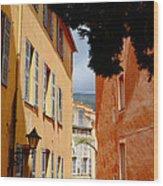 Grasse Alley France Wood Print