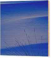 Grasses And Twilight Snow Drifts Wood Print by Irwin Barrett