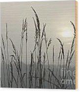 Grasses In Iceblue Landscape Wood Print