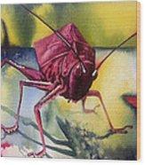 Grasshoper Wood Print