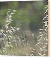 Grassland Wood Print