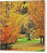 Grassy Autumn Road Wood Print