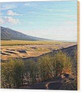 Grassy Dune Wood Print
