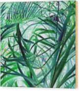 Grassy Glow  Wood Print