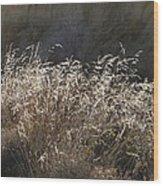 Grassy Knoll Wood Print
