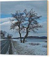 Grassy Point Winter Wood Print