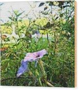 Grave Flower Wood Print