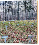 Grave Reminders Wood Print