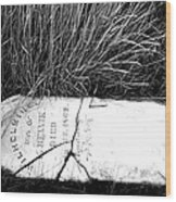 Grave Western Nevada  Wood Print