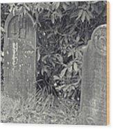 Gravesite Gearheart Oregon Wood Print