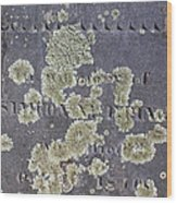Gravestone With Lichen Wood Print