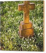 Gravestone With Snowdrops Wood Print