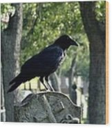Graveyard Bird On Top Of A Tombstone Wood Print