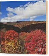 Graveyard Fields In The Mountains Wood Print