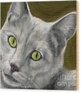 Gray Cat With Green Eyes Wood Print
