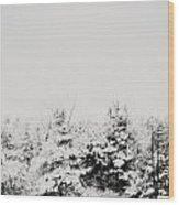 Gray December Winter Snow On Trees Photograph Wood Print