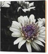 Gray Petals Wood Print