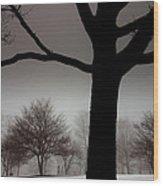 Gray Skies At Night Wood Print