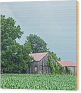 Gray Sky - Red Roofed Barn - Green Fields Wood Print