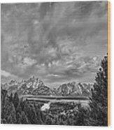 Gray Treetons Wood Print