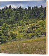 Grayson Highlands Wood Print