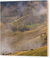 Grazing Above The Fog Wood Print