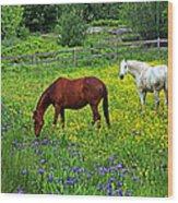 Grazing Amongst The Wildflowers Wood Print