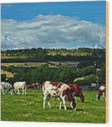 Grazing Cows Wood Print