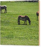 Grazing Horses Wood Print