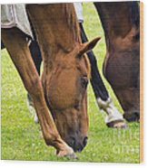 Grazing In Sync Wood Print