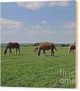 Grazing In The Field Wood Print