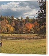 Grazing On The Farm Wood Print by Joann Vitali