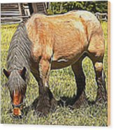 Grazing Wood Print