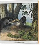 Great Anteater Wood Print
