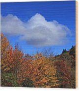 Great Balsam Mountains In The Fall Wood Print