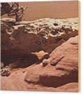 Great Basin Rattlesnake Wood Print
