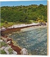 Great Bird Island Beach Wood Print