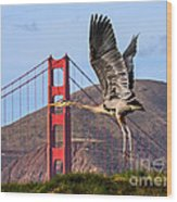 Great Blue At The Golden Gate Wood Print