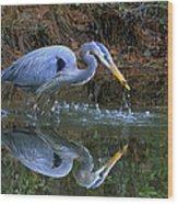 Great Blue Heron #1 Wood Print