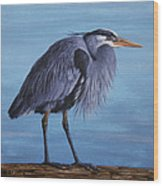 Great Blue Heron Wood Print by Crista Forest