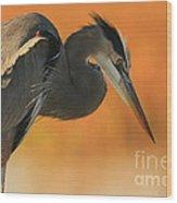 Great Blue Heron Focus Wood Print