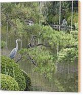 Great Blue Heron In Pond Kyoto Japan Wood Print