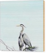 Great Blue Heron Love Two Wood Print
